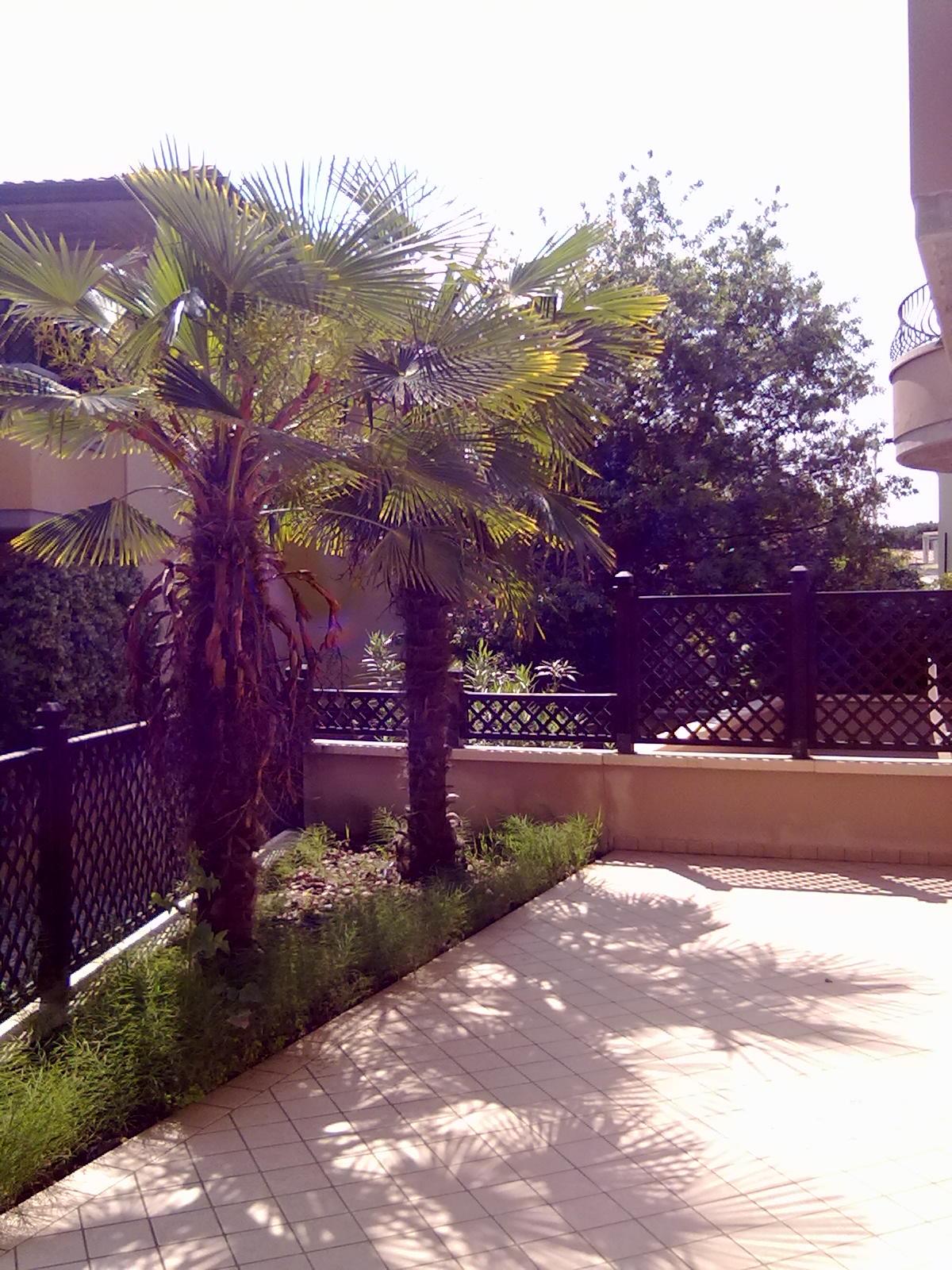 Appartamento in vendita e affitto a Castiglione di Cervia
